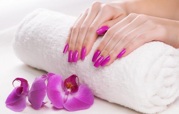 Picture towel, hands, Orchid, manicure