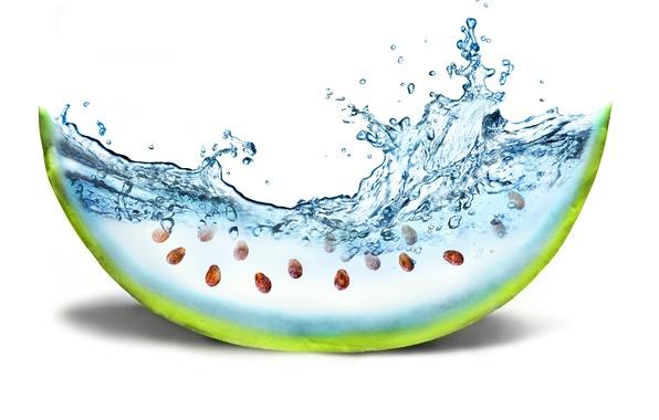 Picture water, creative, watermelon, bone