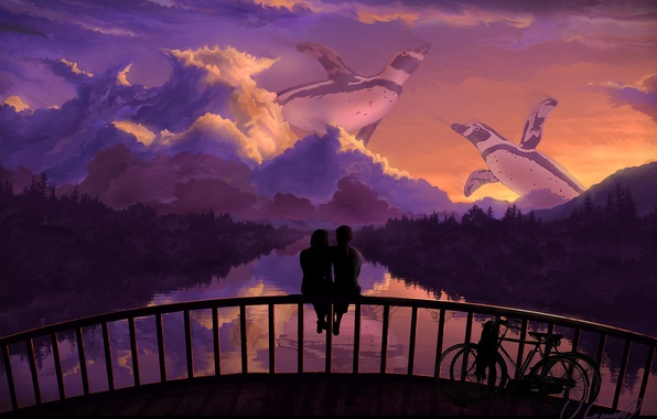 Picture the sky, trees, love, sunset, bridge, bike, reflection, romance, penguins, art, pair, river