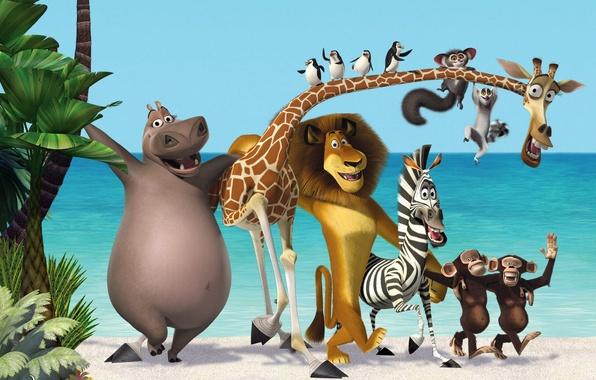 Picture sea, palm trees, cartoon, Leo, Madagascar, penguins, giraffe, Zebra, three, monkey, Hippo, new, new, madagascar …