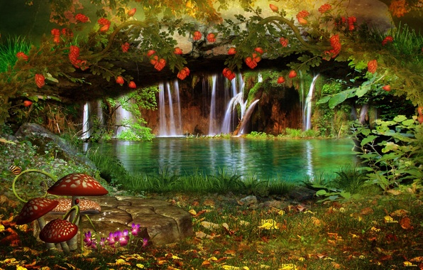 Picture leaves, trees, landscape, flowers, nature, butterfly, mushrooms, waterfall, Liana