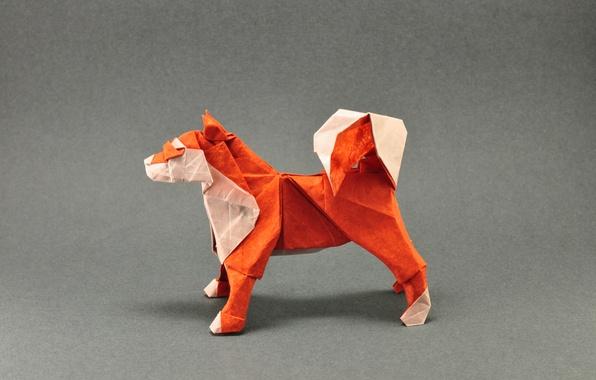 Picture orange, grey, dog, tail, origami, dog, tail, orange, origami, gray