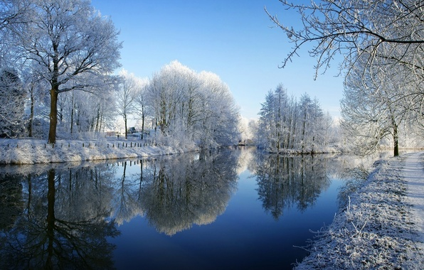 Picture winter, frost, snow, trees, river