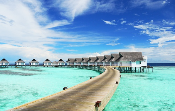 Picture sea, tropics, houses, the bridge