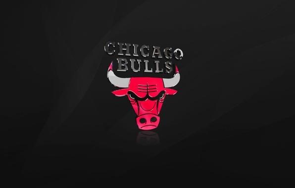 Picture Black, Chicago, Basketball, Logo, NBA, Chicago Bulls, Bulls