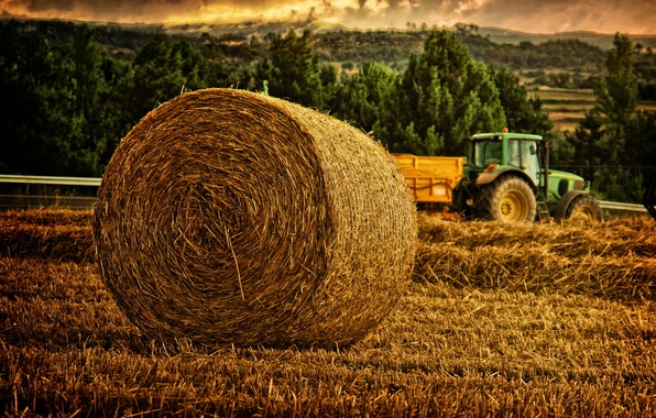 Picture meadow, hay, tractor, hay, roll, shaft