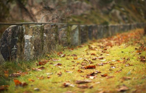 Picture sadness, autumn, grass, the area, the fence, grass, fallen, orange leaves, season, original., stone fence