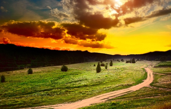 Picture road, field, forest, the sky, grass, the sun, clouds, trees, sunset, flowers, clouds, plants, paths