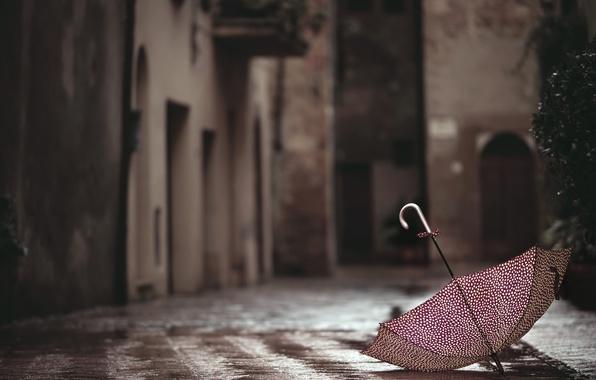 Picture the city, street, umbrella