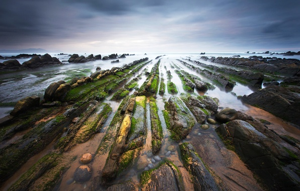 Picture water, nature, stones, coast, moss, excerpt, Spain, The Bay of Biscay, Barrika