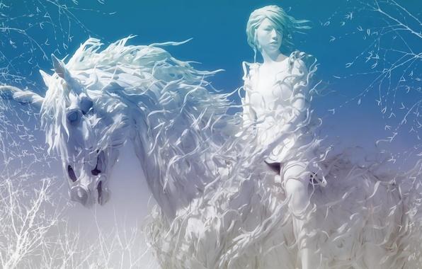 Picture winter, white, horse, Amazon