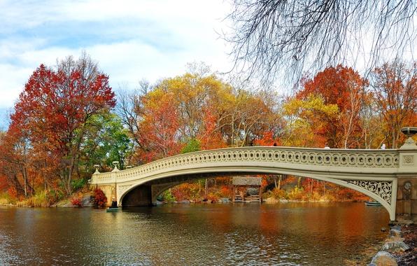 Picture autumn, leaves, trees, bridge, Park, river, landscape, nature, bridge, park, autumn, leaves, tree