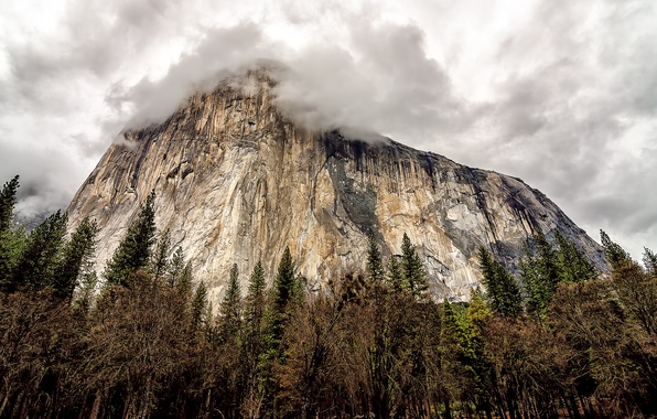 Picture the sky, trees, clouds, rock, mountain, CA, USA, USA, rock, Yosemite, sky, trees, California, clouds, …