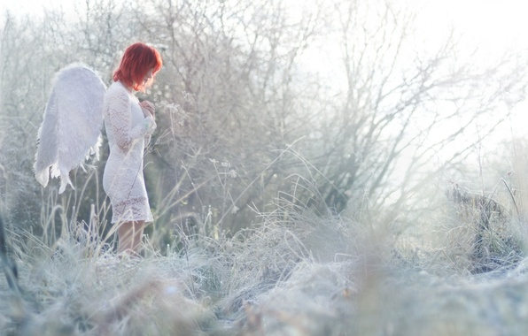 Picture girl, nature, angel
