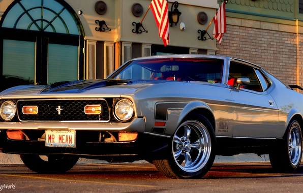 Picture Mustang, Ford, 1971 Ford Mustang