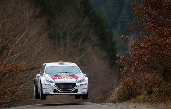 Photo Wallpaper Jump, Peugeot, Rally, The Front, 208, T16, ERC