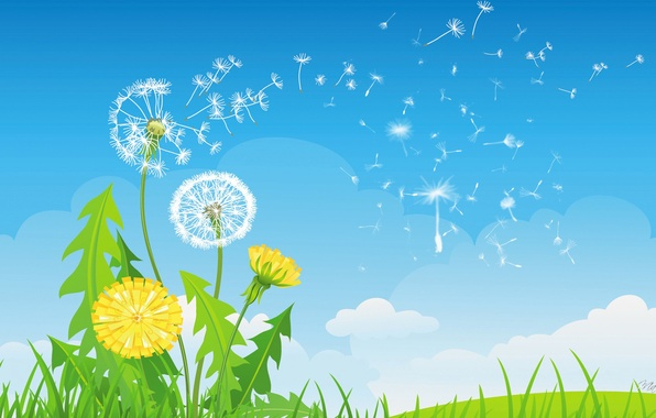 Picture the sky, grass, clouds, flowers, dandelion, collage, vector, blade of grass