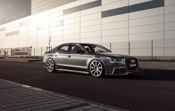Picture Audi, MTM, Talladega