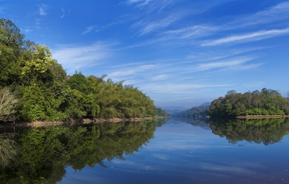 Picture the sky, water, clouds, trees, landscape, nature, reflection, green