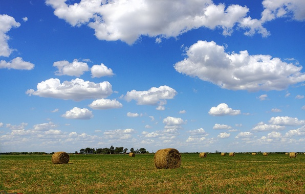 Picture field, the sky, clouds, horizon, hay