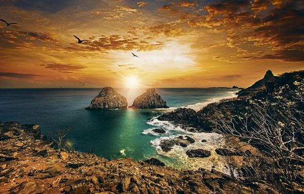 Picture sunset, the ocean, rocks, coast, Brazil, Brazil, The Atlantic ocean, Atlantic Ocean, Pernambuco, Pernambuco, Fernando …