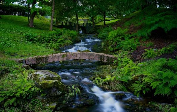 Picture nature, Park, river