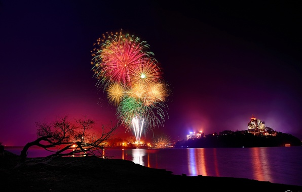 Picture night, the city, lights, lake, fireworks