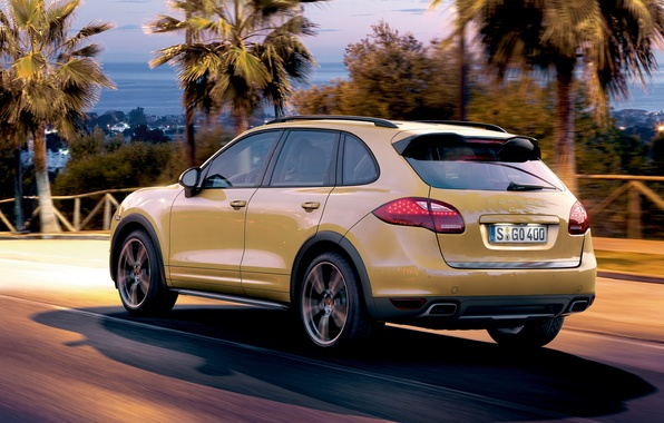 Picture palm trees, porsche, Porsche, rear view, Cayenne, crossover, cayenne s