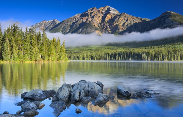 Picture forest, the sky, clouds, trees, mountains, lake, stones, top