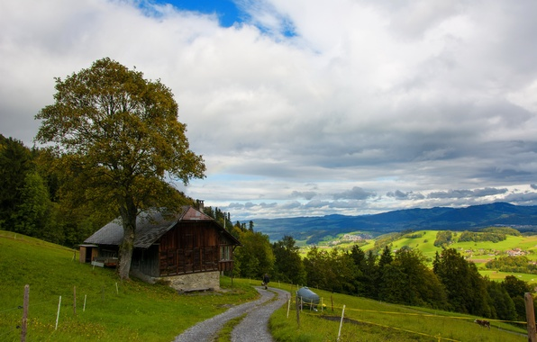 Picture road, mountains, house, tree, hills, Switzerland, slope, Wattenwil