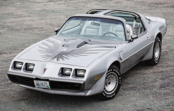 Picture Pontiac, Pontiac, the front, Firebird, Trans Am, 1979, 10th Anniversary, 6.6, Feared, L80