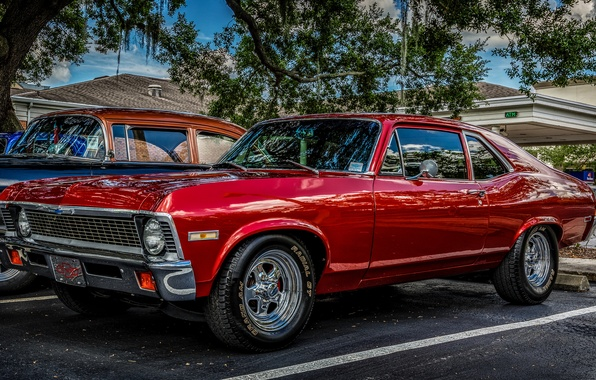 Picture red, classic, 1971 Chevrolet Nova, Chevrolet Nova