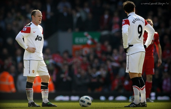 Picture football, England, england, football, manchester united, premier league, wayne rooney, berbatov