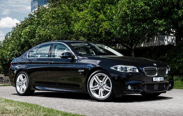 Picture BMW, BMW, sedan, F10, Sedan