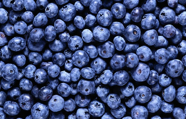 Picture background, food, blueberries, berry, vitamins :)