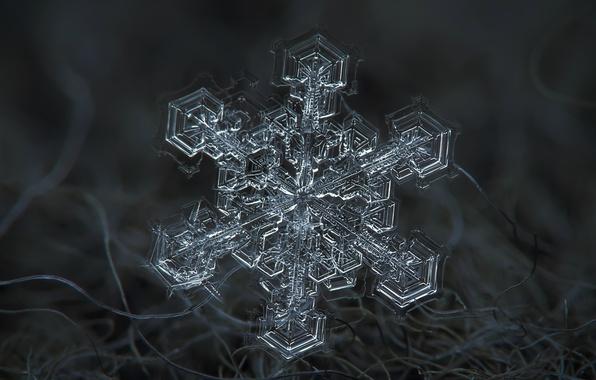 Photo wallpaper winter, snow, fiber, snowflake, macro