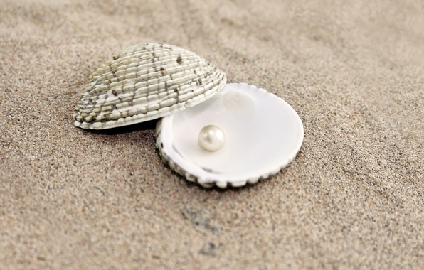 Picture sand, shell, pearl