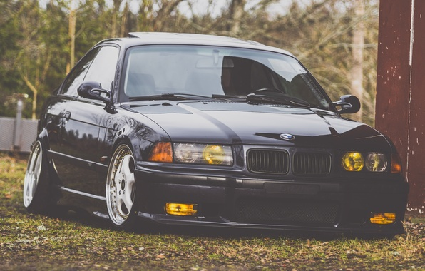 Picture Autumn, BMW, Leaves, Black, BMW, stance, E35
