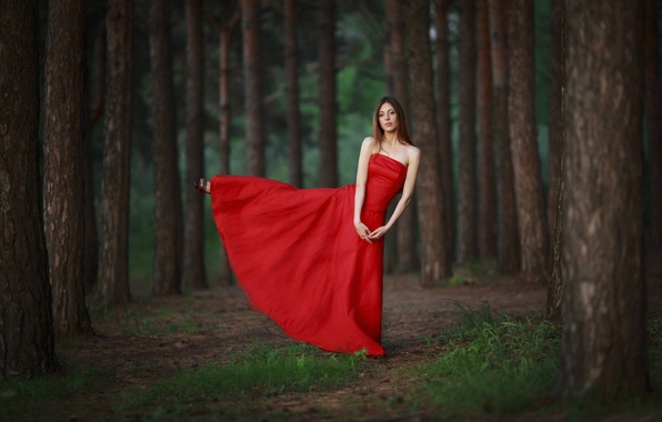 Picture forest, girl, grace, red dress, balance