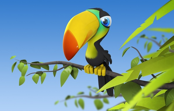 Picture bird, branch, leaves, Toucan