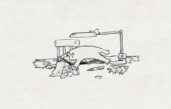 Picture cat, paper, table, figure, lamp, chair, handle, lies, pieces, Kote, simon's cat