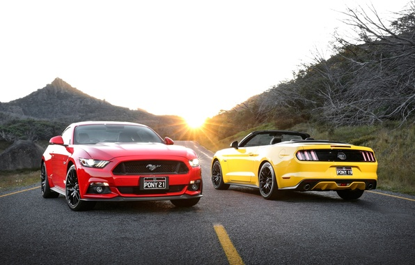 Photo wallpaper Mustang, Ford, Mustang, Ford