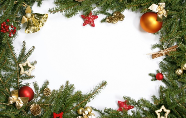 Picture branches, berries, stars, cinnamon, bells, bumps, Christmas decorations