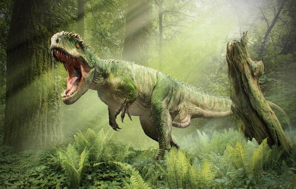 Picture forest, dinosaur, mouth, roar, T-Rex, Tyrannosaurus