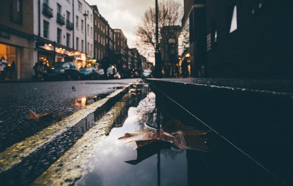 Picture leaves, night, reflection, people, tree, street, mirror, puddle, cars, lamppost, rainy