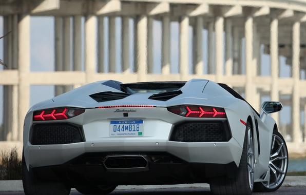 Picture white, roadster, back, LP700-4, Lamborghini, aventador, Lamborghini Aventador