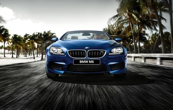 Picture BMW, BMW, convertible, Cabrio, F12, 2015