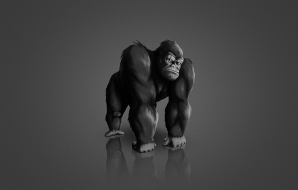 Picture the dark background, animal, monkey, gorilla, monkey, gorilla