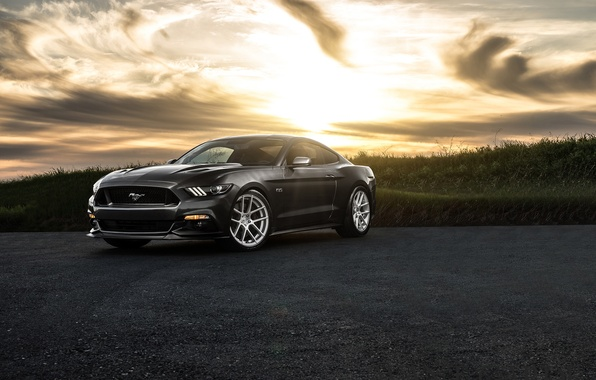 Picture Mustang, Ford, Muscle, Car, Front, Sunset, Wheels, Before, 2015, Garde