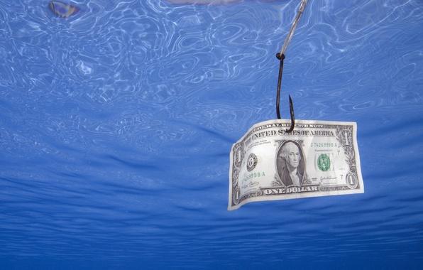 Picture dollar, Money, fishing